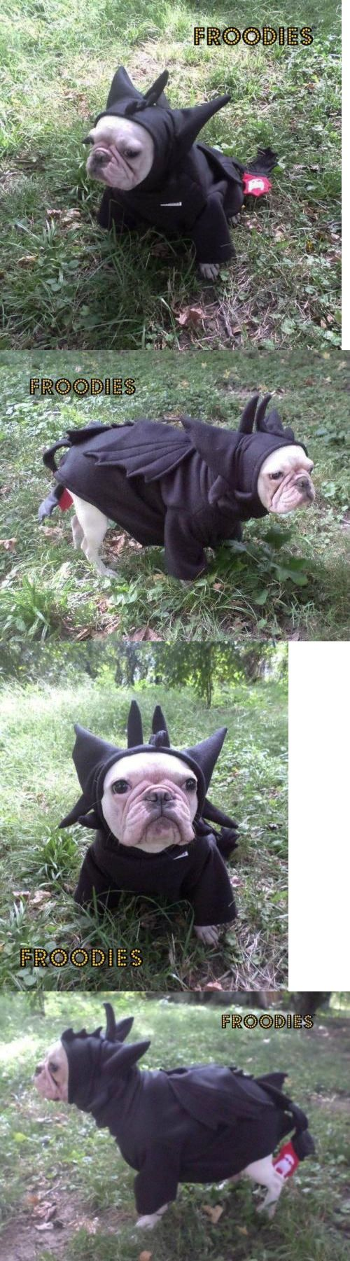 Costumes 52352: French Bulldog Boston Pug Dog Froodies Hoodies Cosplay Costume Toothless Dragon BUY IT NOW ONLY: $49.99