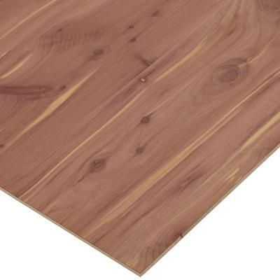 Columbia Forest Products 1/4 In. X 4 Ft. X 4 Ft. PureBond Aromatic Cedar  Plywood Project Panel (Free Custom Cut Available)