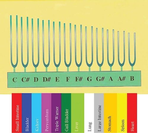 Fabien Maman's Classical Tuning Forks®, Tama-Do, The Academy of Sound Healing, Color Therapy and Chi Movement