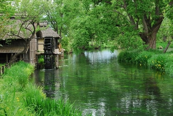 I'd love to live in a place with a water wheel