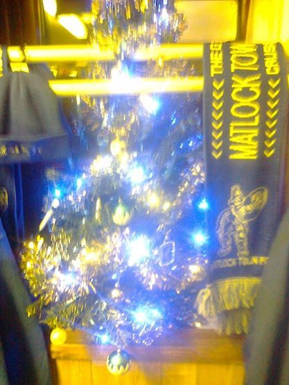 Matlock Town Shop Christmas Tree