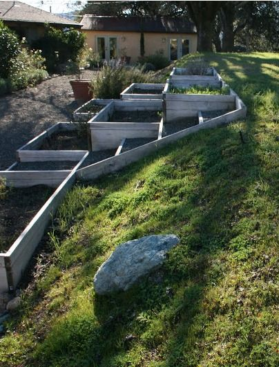 Raised flowers & vegetable beds on a slope, part shade. This is what I want on my slope!!!