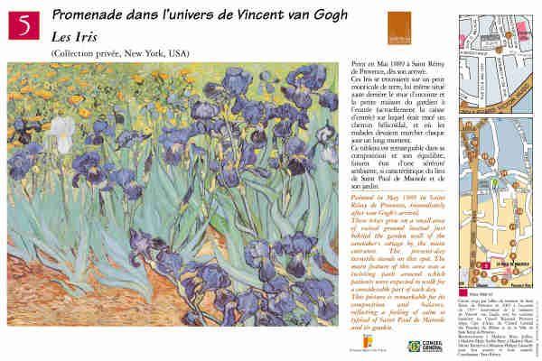"""Les iris"" #peinture #provence #vangogh #saintremydeprovence"