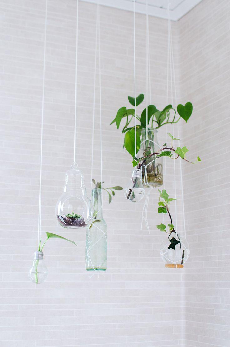 Make a vase out of a light bulb