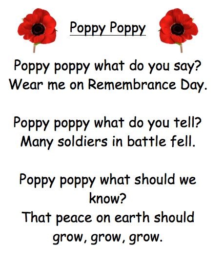 remembrance day poems for kids - Google Search