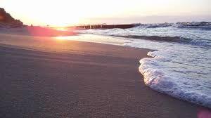 Картинки по запросу природа лето море