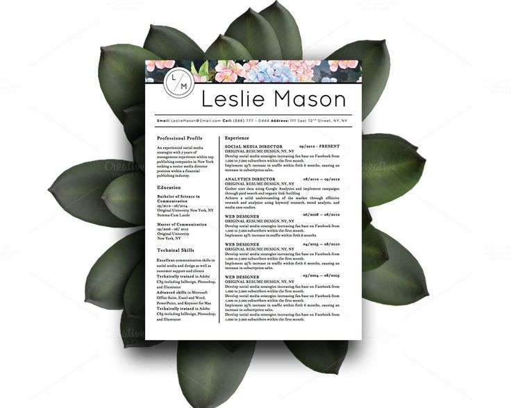 62 Best Professional Resume Templates Images On Pinterest