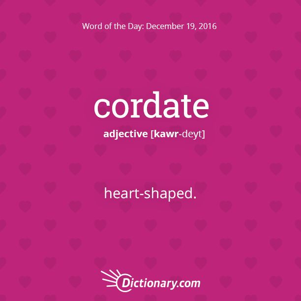 Dictionary.com's Word of the Day - cordate - heart-shaped: a cordate shell.
