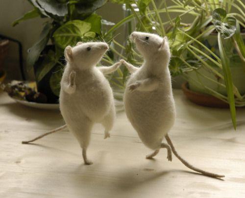 Dancing Rats by Natasha Fadeeva