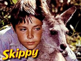 Skippy the bush kangaroo.... can you imagine getting a kangaroo to do what you want it to!?