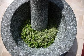 Schätze für das ganze Jahr - Brennessel-Kräutersalz