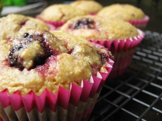 blackberry coconut lime muffins # glutenfree coconut muffins blanched ...