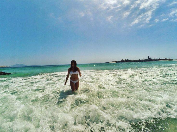 Playa Totoralillo, Región Coquimbo, Chile 🇨🇱
