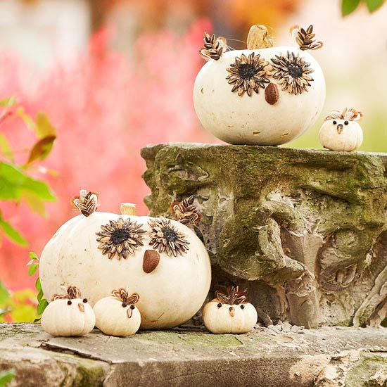 Crafty Gourd Critters - Fashion a family of friendly critters to nestle on a fence post or railing. Use small pumpkins and gourds for bodies and attach sunflower seeds, feathers, and nuts with hot glue to make facial features.