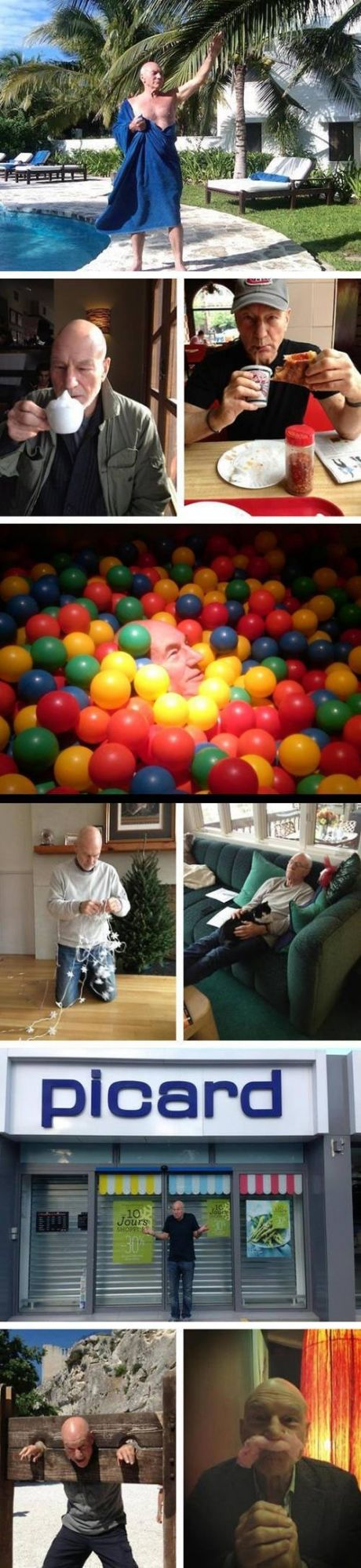 When I'm feeling a little blue, I can always pull up these pictures of Patrick Stewart being adorable. :-)