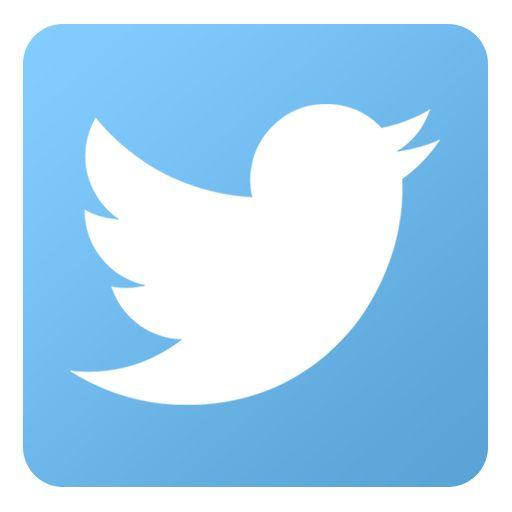 26 best twitter logo images on pinterest twitter icon