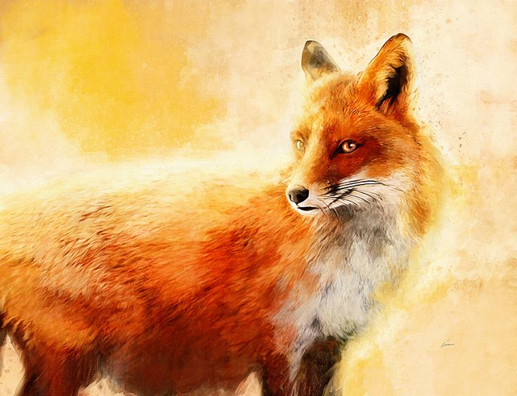 FOX Print - Orange Wall Art - Fox Painting - Fox Picture - Orange Decor - Orange Wall Art - Fox Art - Animal Art Painting Print - Vixen  Our outstanding quality hand stretched canvas prints come complete with UV protected HP inks and specialised sawtooth hooks for hanging, meaning they are ready for you to put up on the wall in your home as soon as they arrive. Stretched across a 18mm thick, solid wooden pine frame, our canvas prints make use of a highly durable, heavyweight canvas