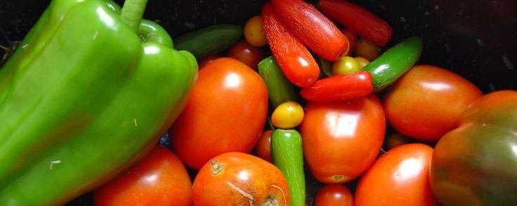 7 vegetales low carb ideales para diabéticos y pérdida de grasa en general