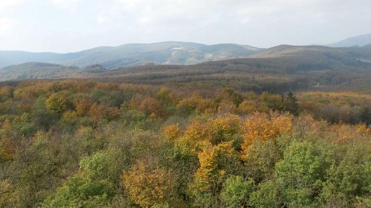Počasie Pezinok http://pocasie.pozri.sk/predpoved-pocasia/pezinok