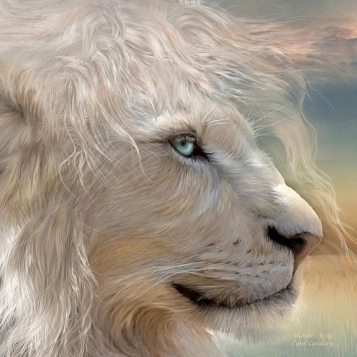 Nature's King Portrait - Carol Cavalaris