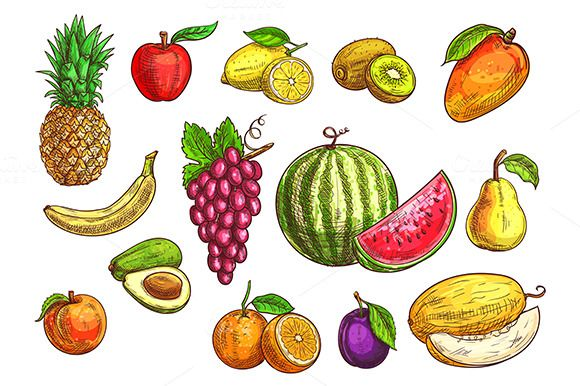 Hand drawn fruits #sketches set of isolated #vector #tropical and exotic #fruits Color drawings of pineapple, banana, apple, avocado, peach, red grape, lemon, orange, watermelon, kiwi, plum, mango pear melon download now➩ https://creativemarket.com/Seamartini/890882-Hand-drawn-fruits-sketches-set?u=Datasata