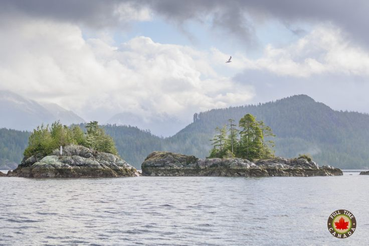 Clayoquot Sound in Tofino.