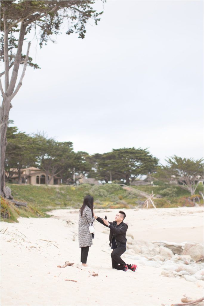 Carmel By The Sea Picnic Proposal Willie Peony Beach