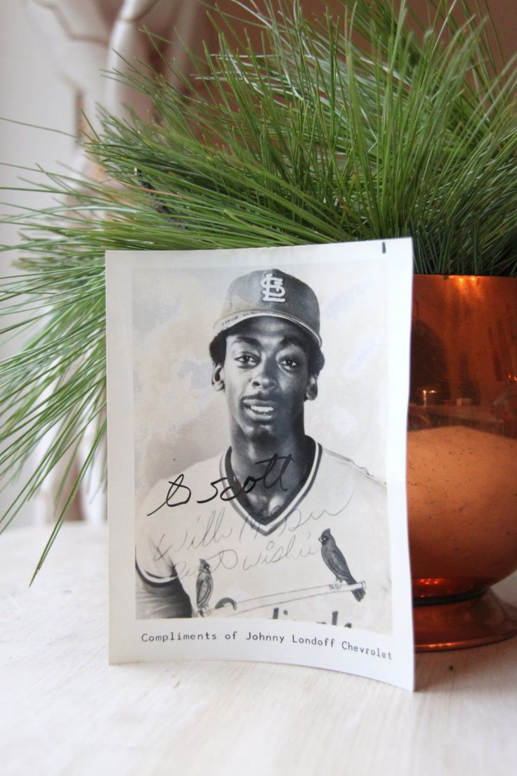 Will Mcgee Signed Photograph, Autograph, St. Louis Cardinals, Major League Baseball, Americana, MLB, World Series, WTH-1507 by WeeklyTreasureHunt on Etsy