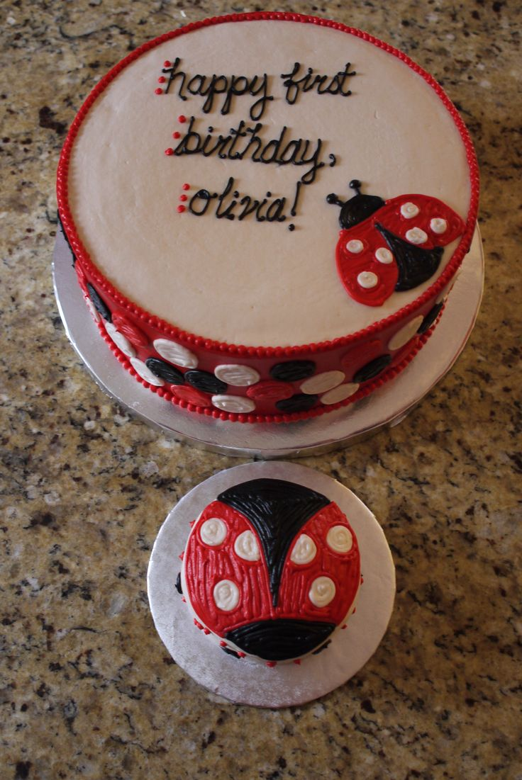 Ladybug cake and ladybug smash cake for a first birthday.