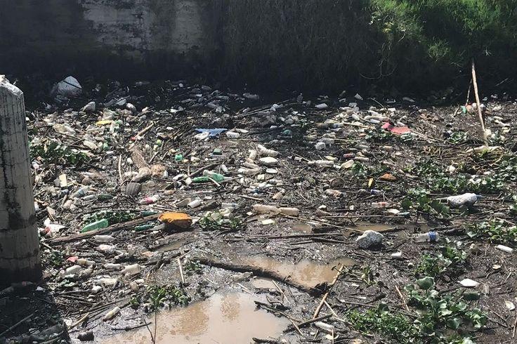 Debido a la obstrucción que tienen las compuertas con lirio y basura, el agua tarda mucho en hacer su recorrido lo que ha repercutido en la inundación de las canchas ...