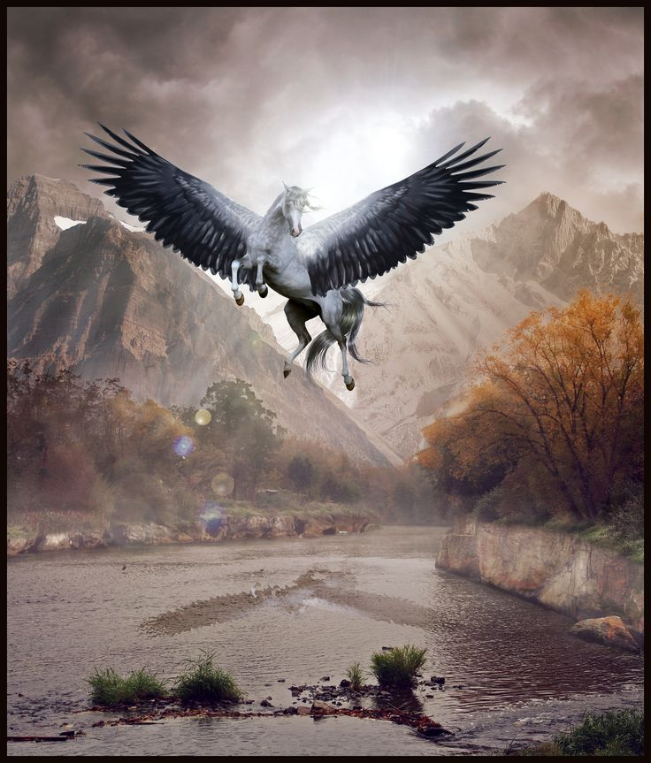 187 best Unicorns Wings and Magical Things images on Pinterest