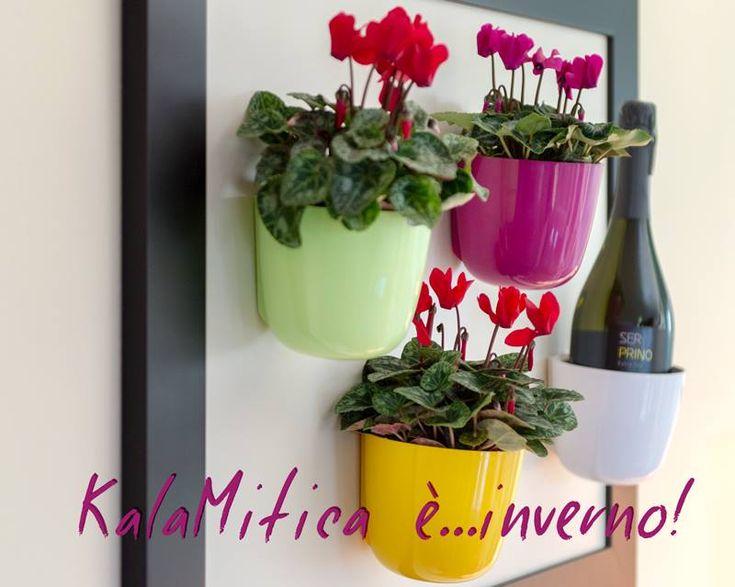 Kalamitica è design italiano al 100%