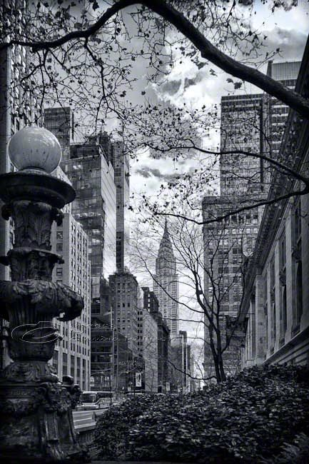 New York City Architecture Photo black & white Chrysler Building (seen through trees at the NY Public Library)