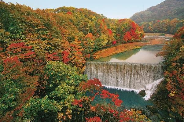 見事に色づく秋の紅葉