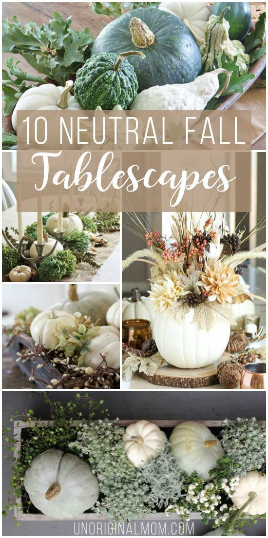 10 Beautiful Neutral Fall Tablescapes