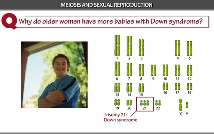 66 best cells meiosis images on pinterest ap biology life helpful video nondisjunction and down syndrome fandeluxe Image collections