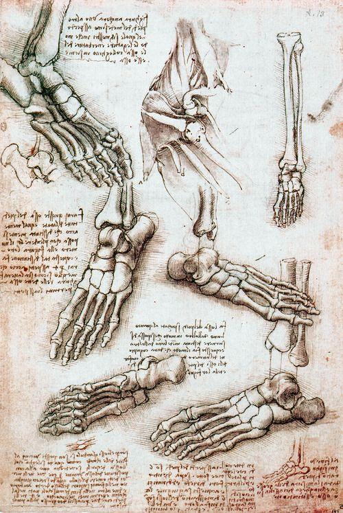 Best 33 Leonardo Da Vinci Images On Pinterest Sketches Classical