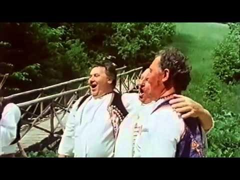 Bratři Prachařovi z Kuželova