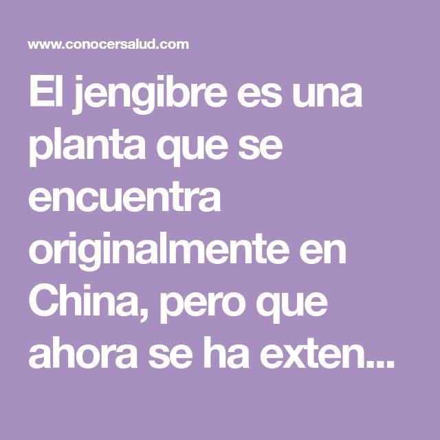 El jengibre es una planta que se encuentra originalmente en China, pero que ahora se ha extendido por todo el mundo. La raíz de la planta se utiliza comúnmente como especia. La mayoría puede asociar el jengibre con manjares dulces tales como una bebida fría de jengibre, delicadas galletas de jengibre o el pan de