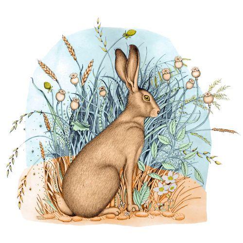 Hare (print et de la carte)