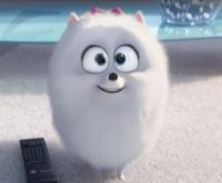 Image - Gidget.png - The Secret Life of Pets Wiki - Wikia