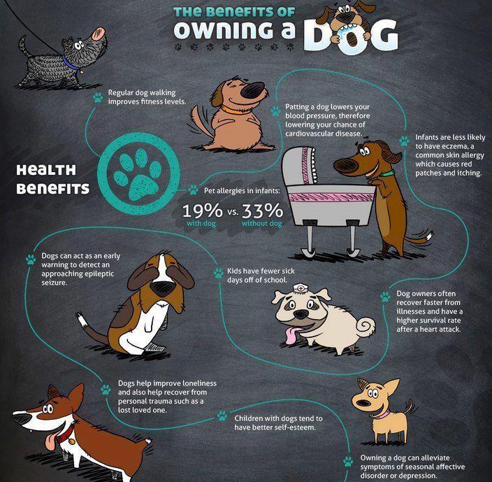 6 Health Benefits of Having Pets