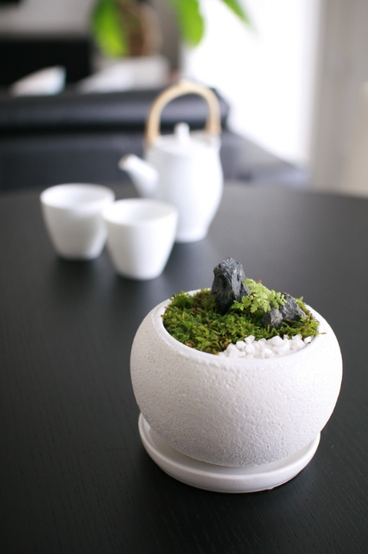 Tales of Japanese tea: Small Japanese garden on the table