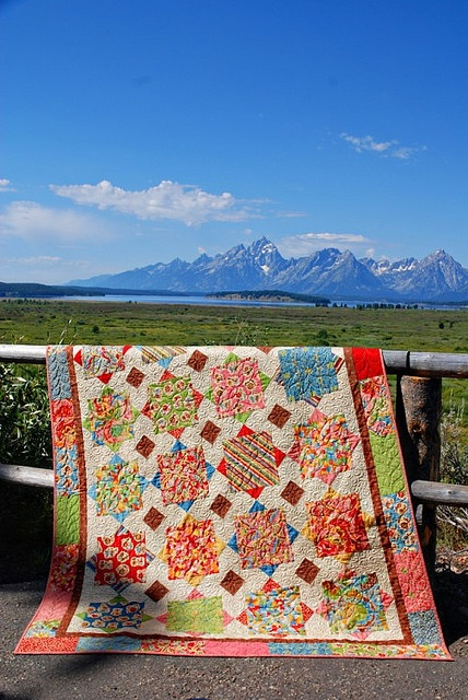 125 best a large print quilt images on Pinterest   Quilt patterns ... : quilt patterns for big prints - Adamdwight.com