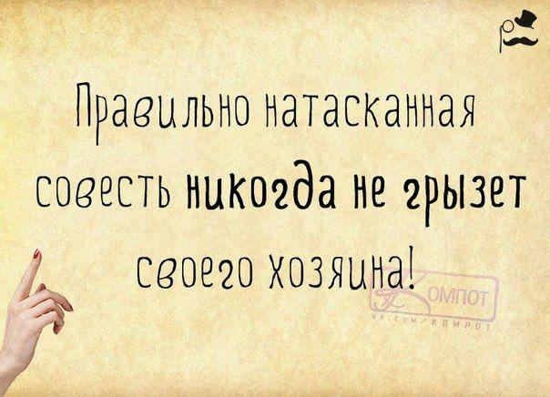 Прикольные фразки в картинках (24 штуки) » RadioNetPlus.ru развлекательный портал