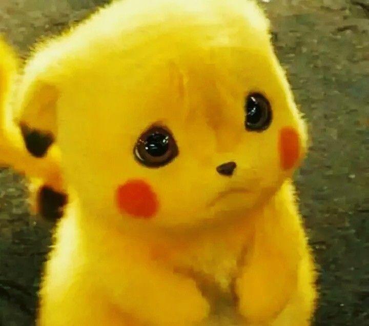 Cute Pikachu, Whatsapp Dp, Cute Pokemon