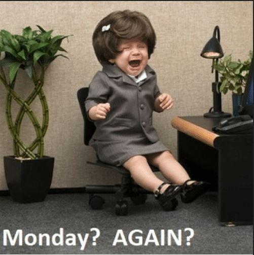 289815ea906e448851bec3884fa49407 good morning meme morning memes 25 beste idee�n over funny monday memes op pinterest grappige,Good Monday Morning Meme