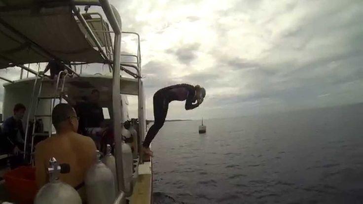Boat dive in Kenting 船潛, 墾丁後壁湖