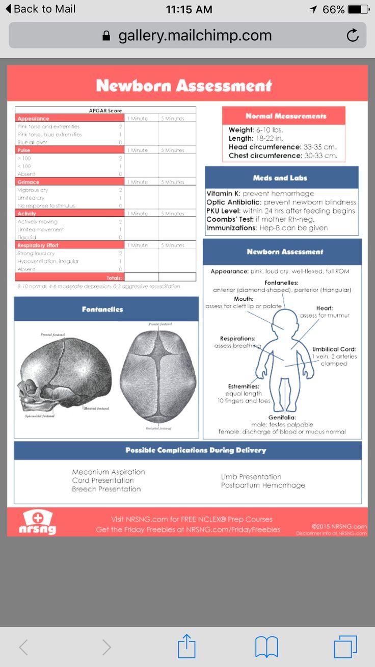 Newborn assessment Neonatal nurse, Pediatric nursing
