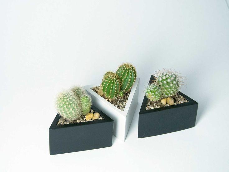 Prisma - vas pentru plante, de la Atelierro. Geometrica, o colectie de vase moderne, ideale pentru plante suculente sau cactusi, acasa sau la birou. Create de Atelierro. www.atelierro.eu